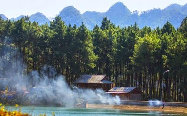 Image result for rừng thông bản áng mộc châu