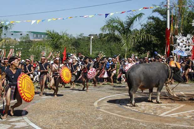 Lễ hội đâm trâu