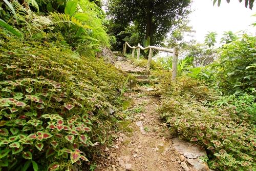 Con đường mòn quanh cửu thác Tú Sơn