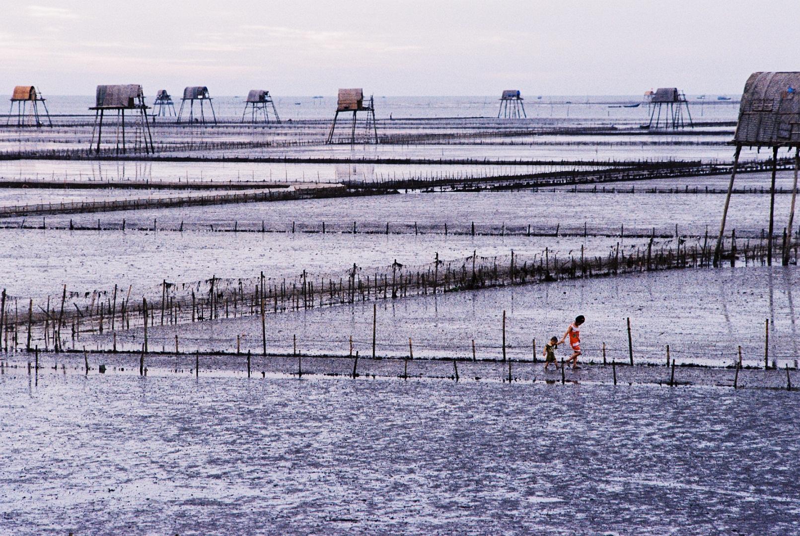Biển Đồng Châu- Thái bình