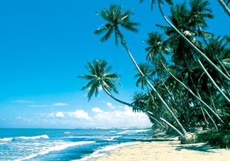 Bãi biển Phan Thiết