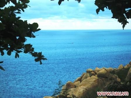 Nước biển xanh ngắt một màu