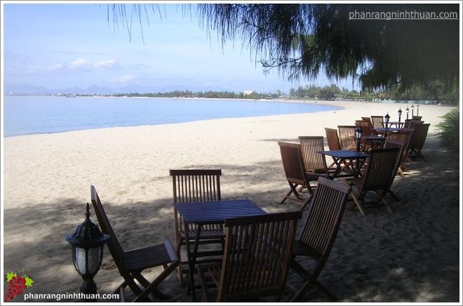 Một góc thư giãn cho du khách dưới bóng cây dương