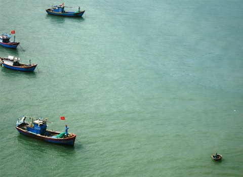 Những con thuyền ra khơi