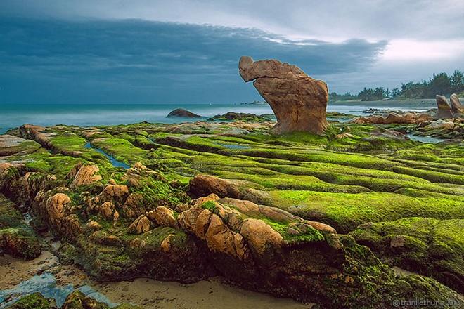 Bãi biển Cổ Thạch chỉ cách TP.HCM 300km, nếu khéo sắp xếp thì bạn và những người thân yêu sẽ có thể hoà với khung cảnh thiên nhiên độc đáo này vào dịp cuối tuần
