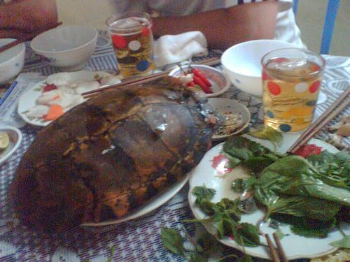 Món ngon Cà Màu: Rùa rang muối.