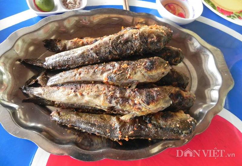 Món ngon Cà Màu: Cá thòi lòi nướng.