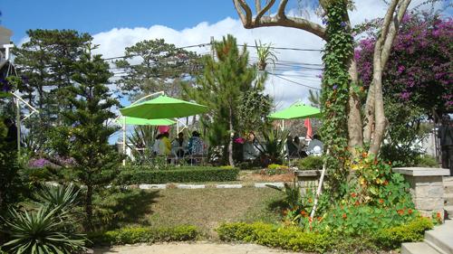 Khuôn viên khu  vườn thư giãn  ngoài trời quanh quán cafe Violet