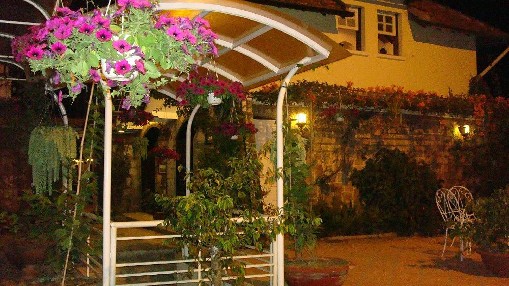 Phía sân sau quán cafe có ghế treo ngồi đọc sách buổi tối