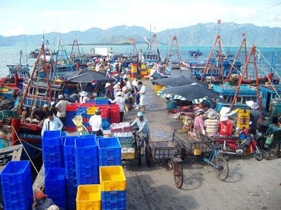 Cảng cá Vĩnh Lương nhộn nhịp khi thuyền về