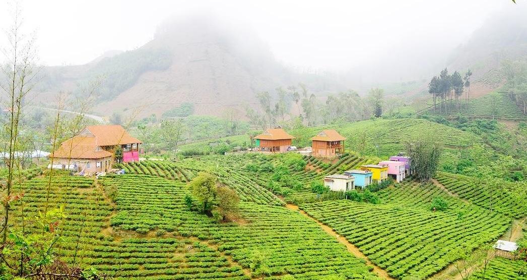 Moc Chau Arena Village.