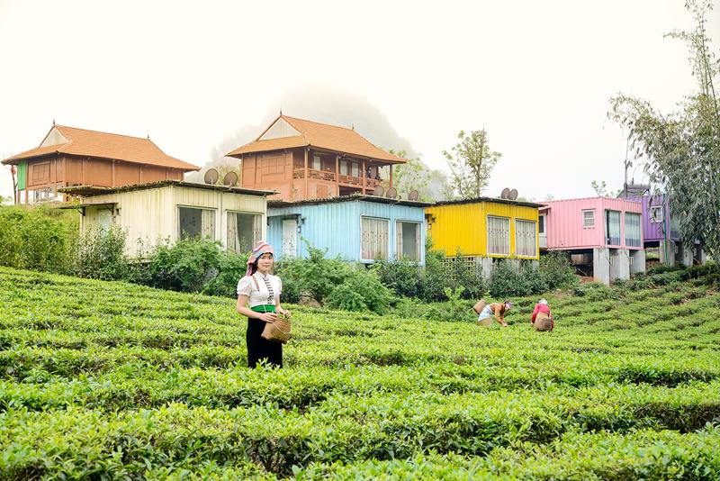 Khách sạn nhà nghỉ tại Mộc Châu