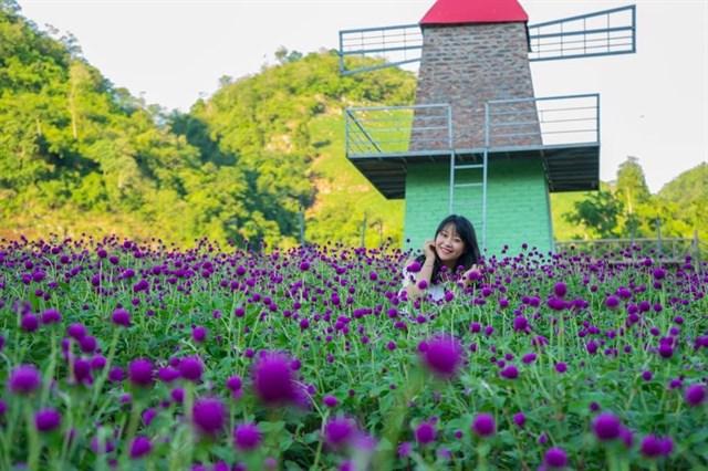 Mộc Châu Happy Land - điểm chụp hình đẹp tại Mộc Châu.