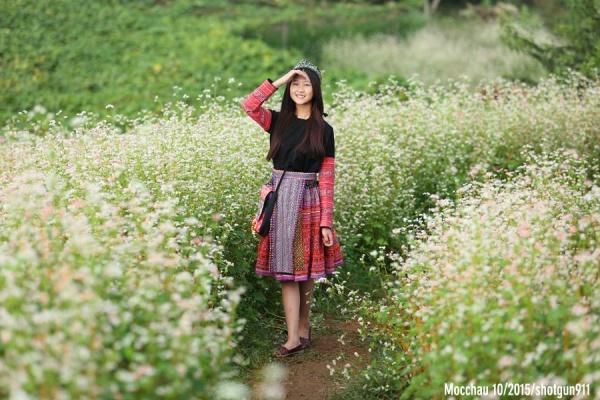 Vườn hoa tam giác Mạch - điểm chụp hình đẹp tại Mộc Châu.