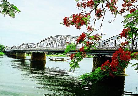 Cầu Tràng Tiền thơ mộng sắc hoa Phượng đỏ