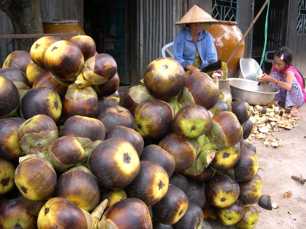 Món ngon ở An Giang: Bánh thốt nốt