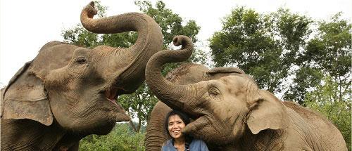 """Chiang Mai """"đóa hồng phương Bắc"""" ở Thái Lan - 11"""