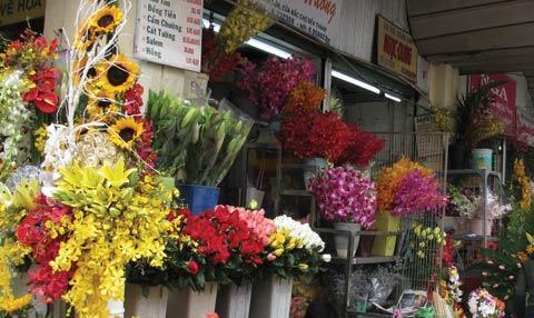 Muôn hoa khoe sắc