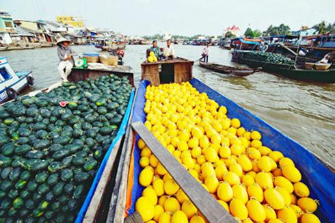 Tấp nập với đủ loại trái cây được bày bán với giá rẻ bất ngờ...