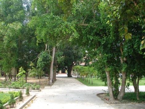Khuôn viên chùa rất rộng rại