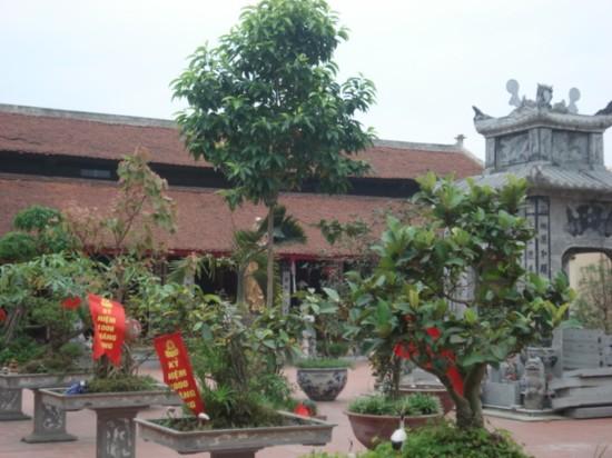 http://media.dulich24.com.vn/diemden/chua-dao-xuyen-3835/chua-dao-xuyen-1.jpg