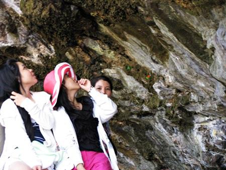 Gần biển, nhưng chùa Hang lại có mạch nước ngọt chảy ra từ núi đá rêu phong khiến du khách ngẩn ngơ