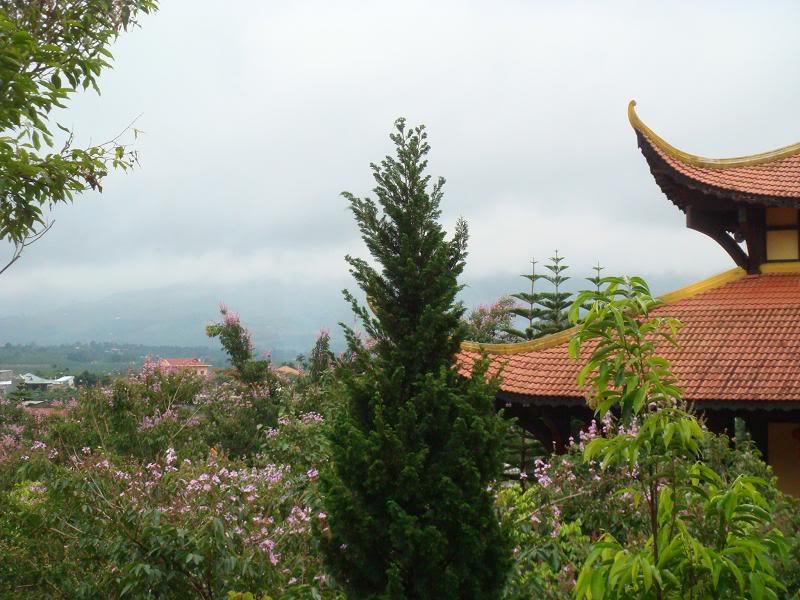 Một góc cảnh quan tại chùa Linh Ẩn