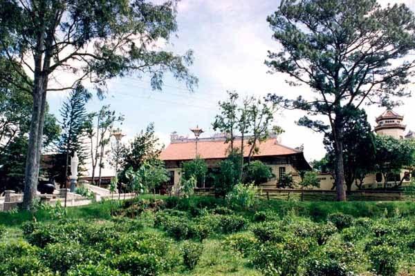 Xung quanh chùa được trồng nhiều cây xanh