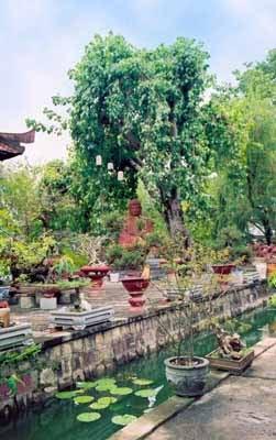 Vườn chùa