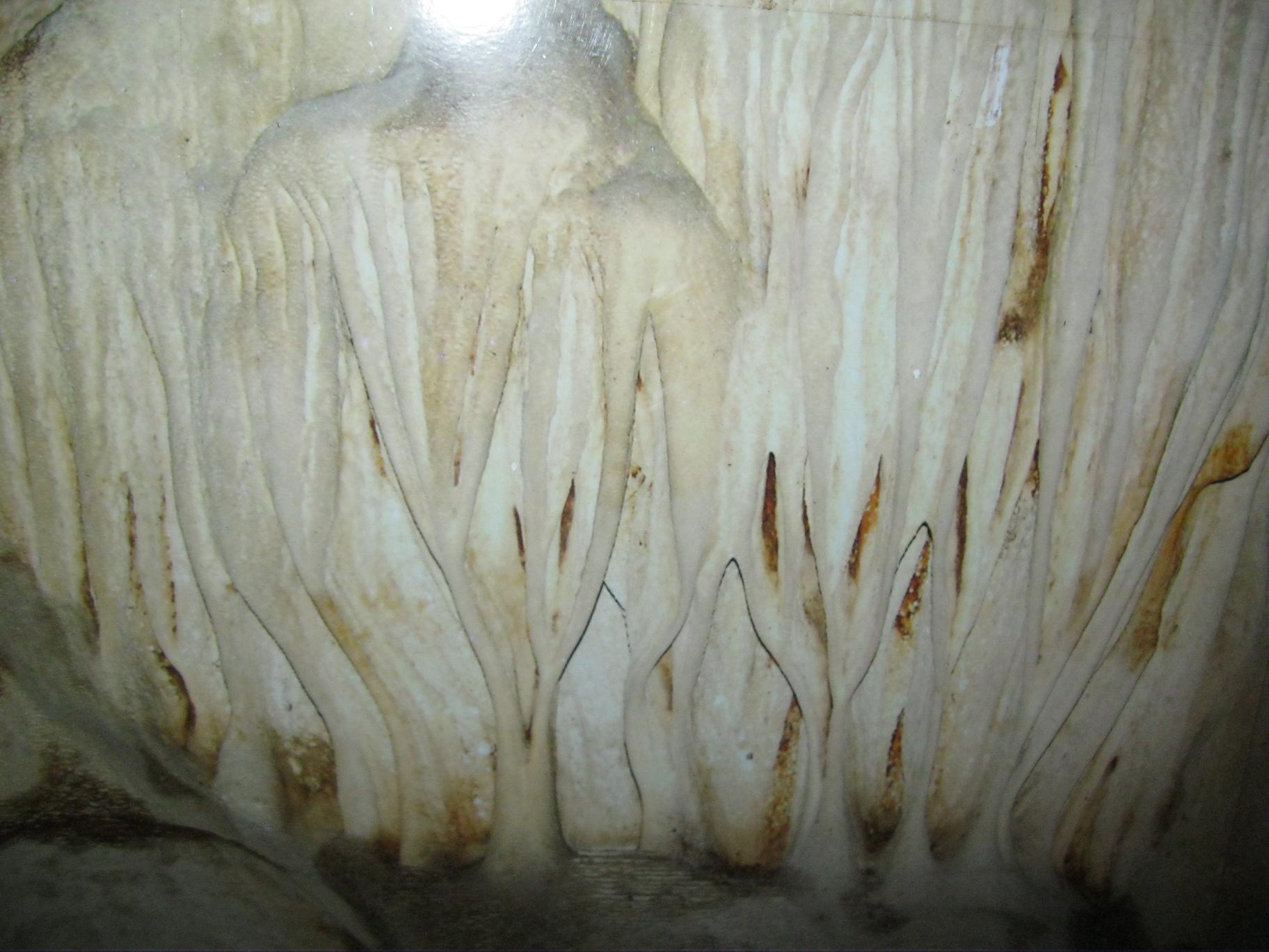 Nhũ đá ở động Tiên - Chùa Tiên - xã Phú Lão.