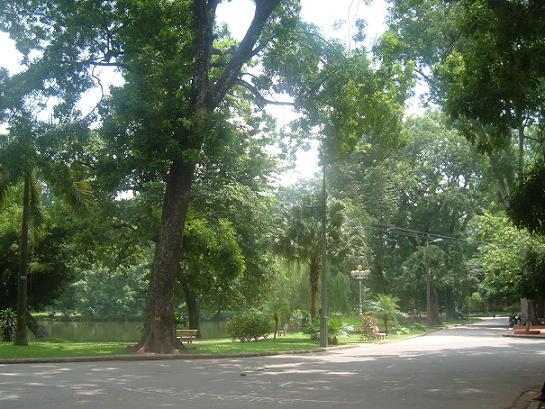 con đường bên trong công viên