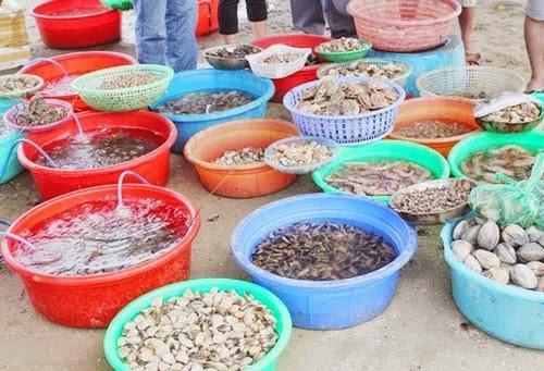 Món ngon Cù Lao Chàm: Hải sản tươi sống.