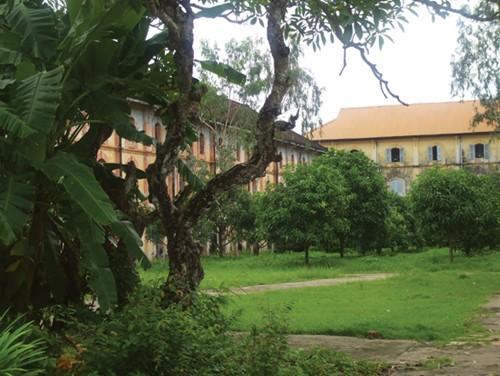 khu vườn xanh bên trong