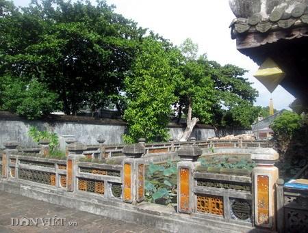 Không gian của Trường Du Tạ trong cung Diên Thọ