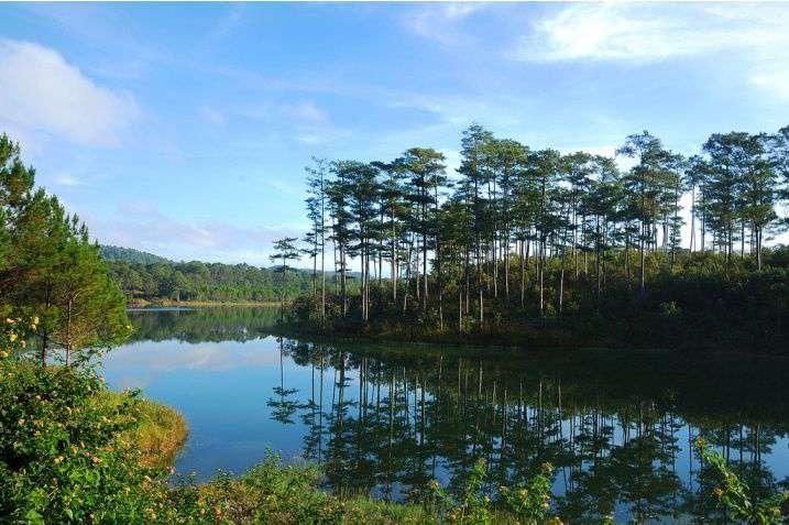 Phong cảnh thiên nhiên Đà Lạt.