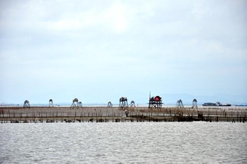 Tàu ra đảo Bạch Long Vĩ bắt đầu từ bến Bính, Hải Phòng