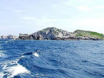 Đảo yến - BÌnh Định