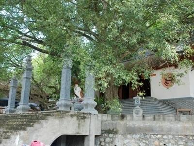 Khuôn viên xanh mát trước đền