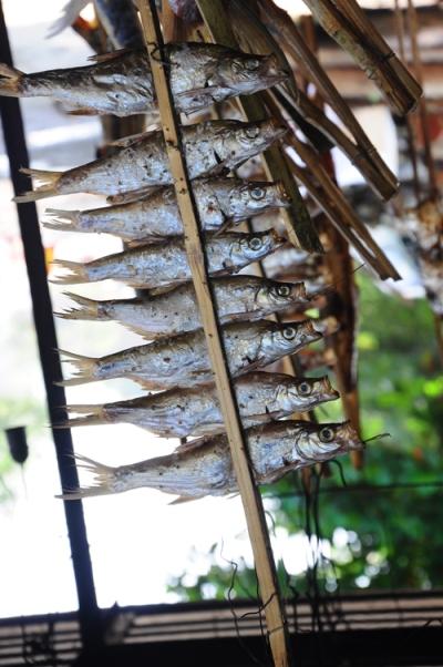Cá nướng sông Đà.