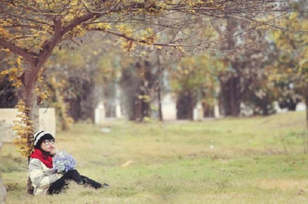 Một thảm cỏ tuyệt đẹp ở ngay Đồ Sơn