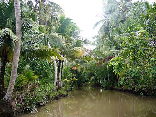 Miệt vườn Phong Điền