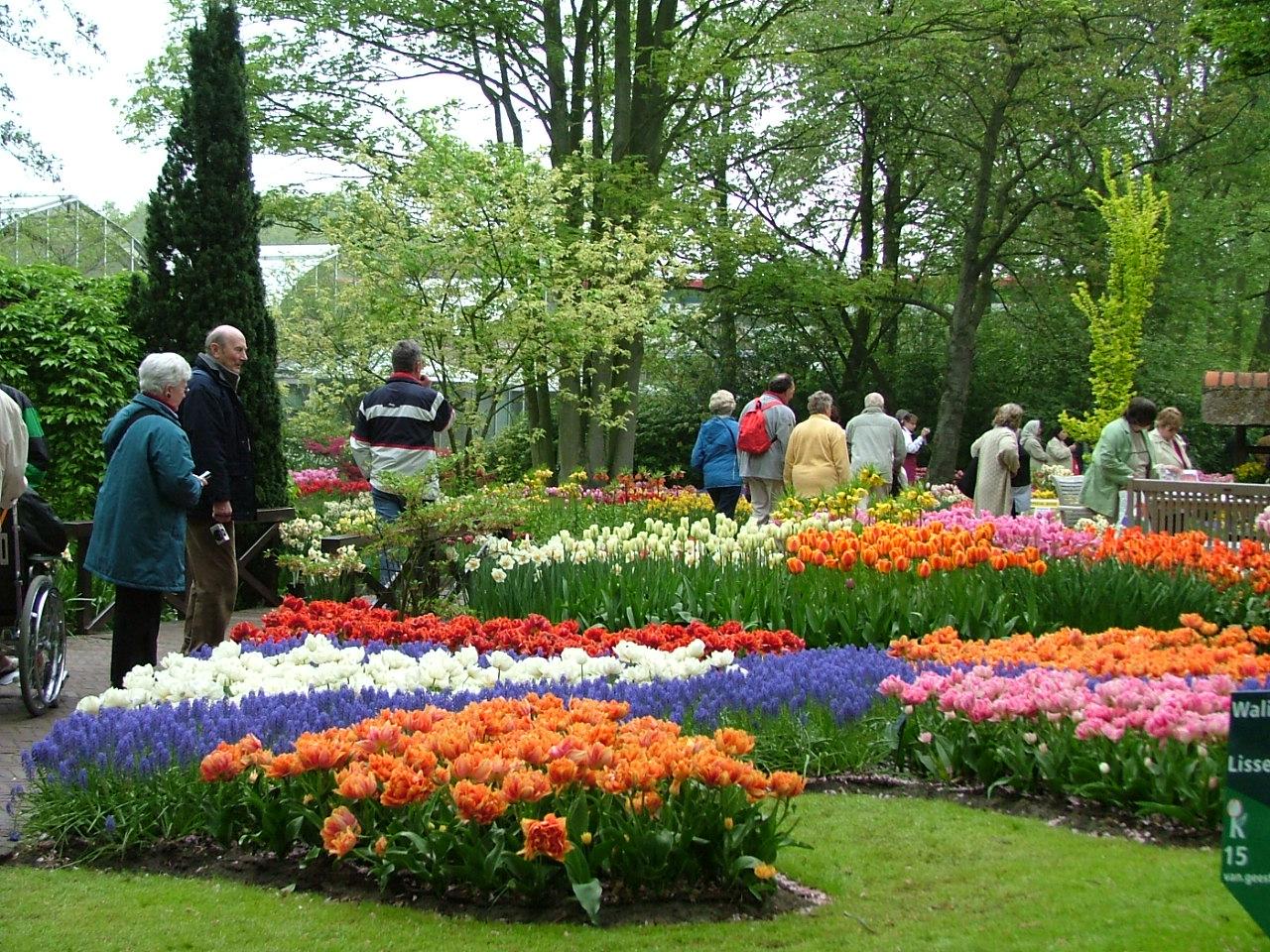 Du khách tham quan công viên hoa Đà Lạt