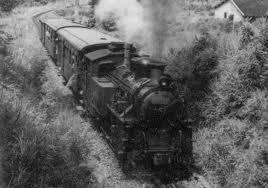 Đường xe lửa lên Đà Lạt là một đường xe lửa răng cưa (cog railroad)
