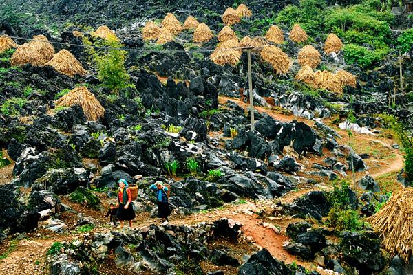Cao nguyên đá Đồng Văn - điểm du lịch hấp dẫn nhất ở Hà Giang.