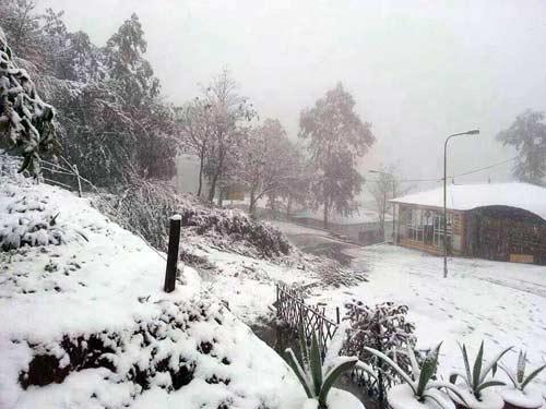 Tuyết rơi miền nhiệt đới luôn là điểm đến hấp dẫn cho các bạn trẻ.