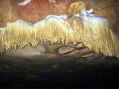 hang Lạng rộng và dài đủ cho hàng ngàn người cùng vào chiêm ngưỡng