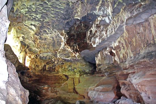 Phần vách động được phân thành hai lớp rõ rệt - dấu tích thể hiện tại đây đã từng có 2 tầng