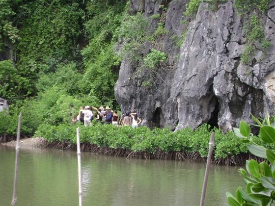 Hang Thiên Long