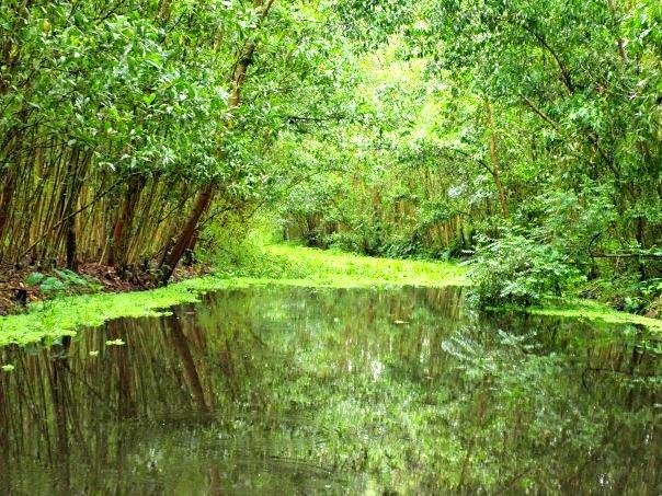 Điểm du lịch hấp dẫn: Khu bảo tồn thiên nhiên Lung Ngọc Hoàng