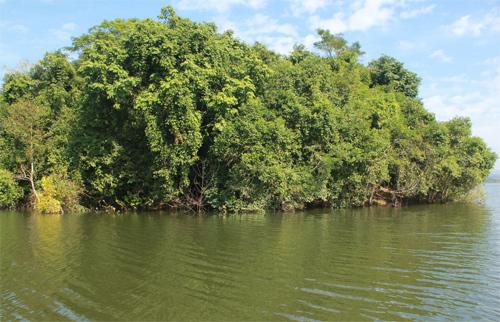 Đây là thời điểm nước mặt hồ dâng cao, một số nơi bị chia cắt thành đảo nhỏ